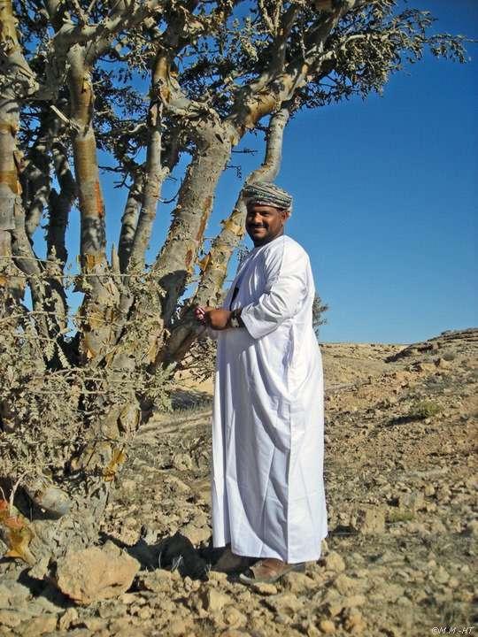 Weihrauchland Oman