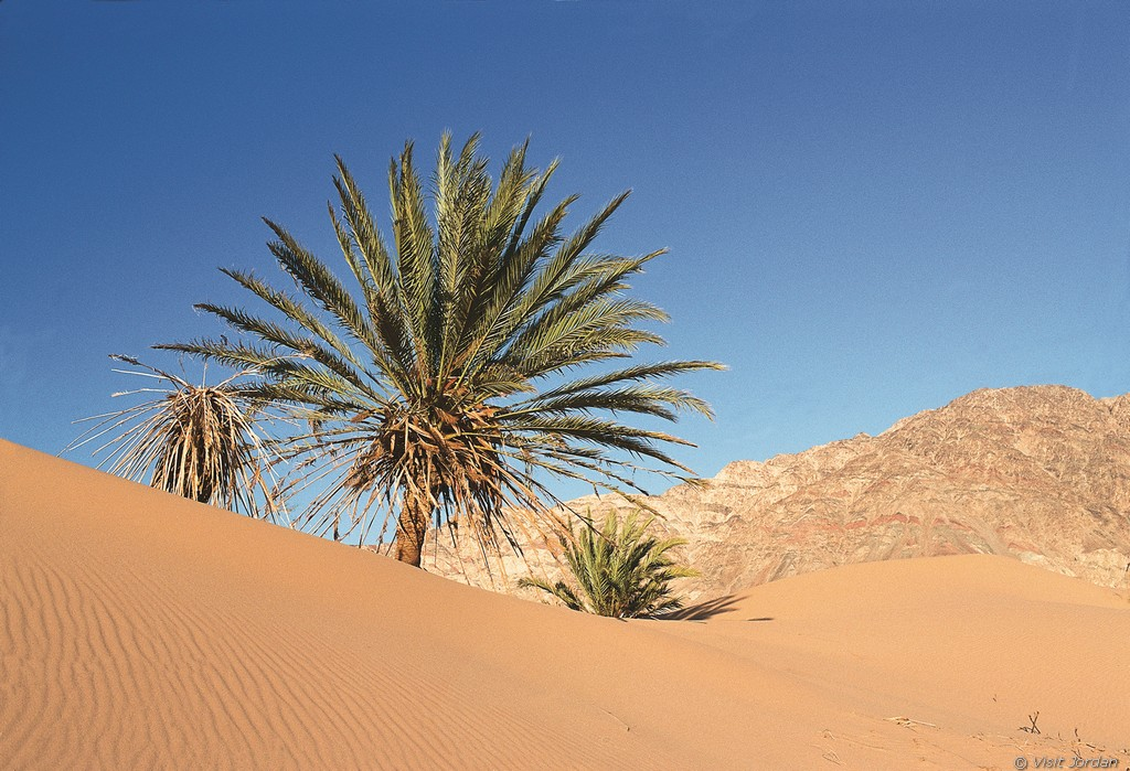 Wadi Araba, Jordanien